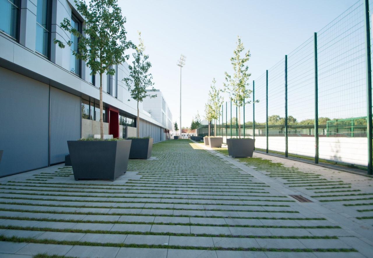 Süß Bau GmbH I Qualität I Zuverlässigkeit I Erfahrung I Freiflächengestaltung